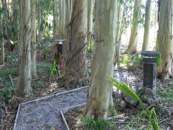 Hardstone pathway